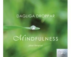 Dagliga droppar Mindfulness Bergstad Johan